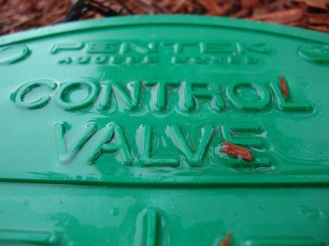 control freak i think they mean